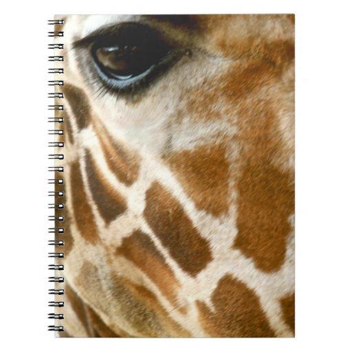 Closeup Giraffe Face Wild Animals Nature Photo Notebooks