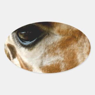 Closeup Giraffe Face Wild Animals Nature Photo Oval Sticker