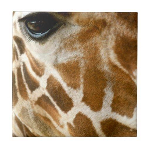 Closeup Giraffe Face Wild Animals Nature Photo Ceramic Tiles