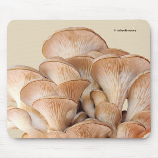 Closeup of An Oyster Mushroom Colony Mouse Mat