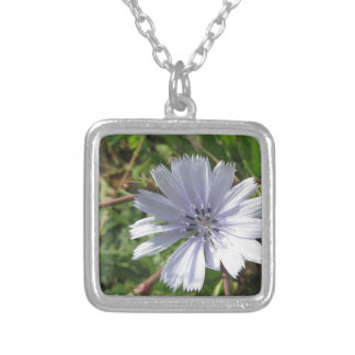 Closeup of blue Chicory flower Square Pendant Necklace