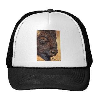 Closeup of Buffalo Mesh Hats
