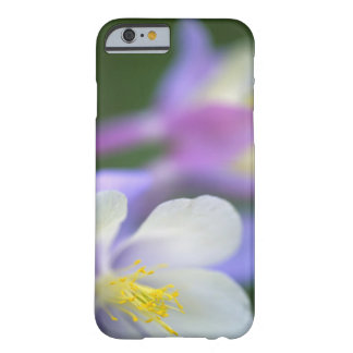 Closeup of Colorado Columbine flower. Barely There iPhone 6 Case