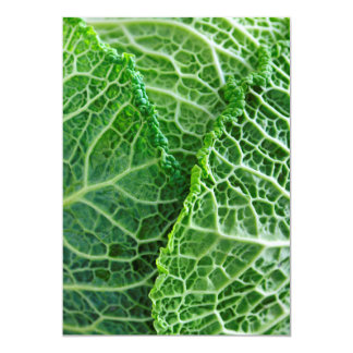 Closeup of green cabbage leaves 13 cm x 18 cm invitation card