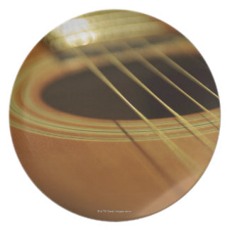 Closeup of Guitar Plate