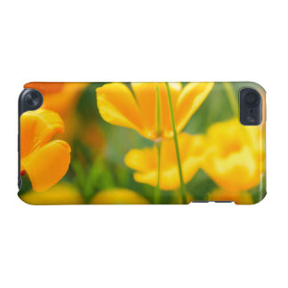 Closeup Of Orange Flowers, Nature Photography iPod Touch 5G Cases