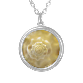 closeup shell silver plated necklace