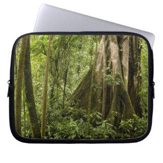 Cloud forest, Bosque de Paz, Costa Rica Laptop Sleeve