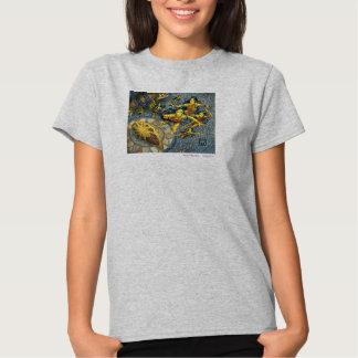 Cloud of Fairies Tee Shirt