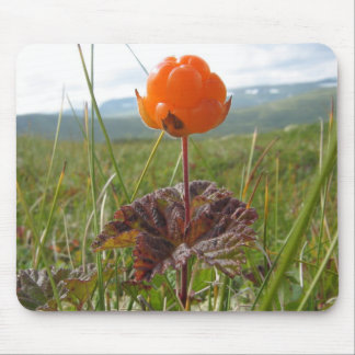 Cloudberry Mousepad