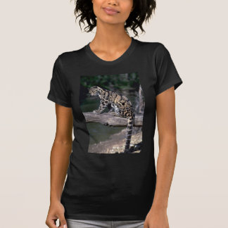 Clouded leopard on log shirts