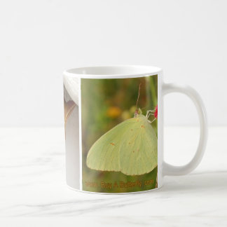 Cloudless Sulphur Butterfly Lifecycle Coffee Mug
