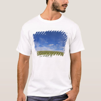 Clouds and Lawn, Tuscany, Italy T-Shirt
