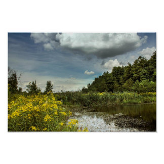 Clouds and wildflowers poster