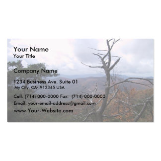 Clouds On The Mountain, Business Card
