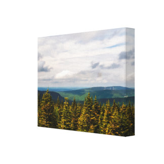 Cloudy Day Over The Forest Canvas Print
