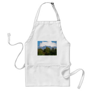 Cloudy Day Standard Apron
