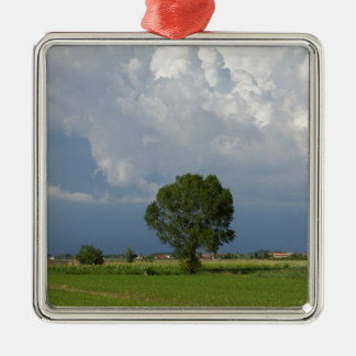 cloudy sky christmas ornament