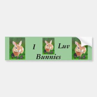 Clover Bunny Bumper Sticker Car Bumper Sticker