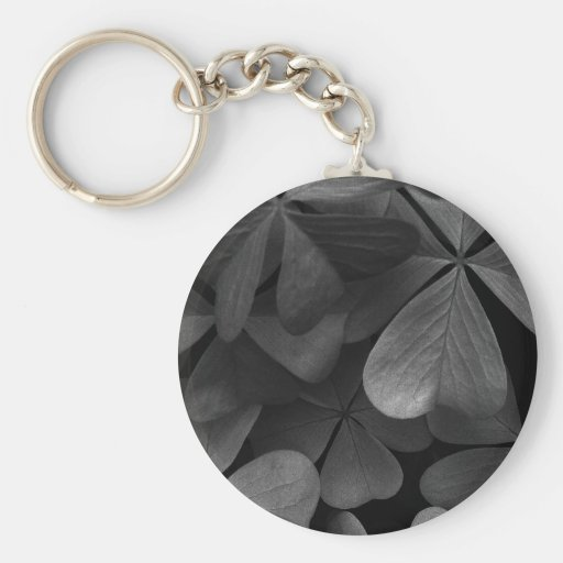 Clover leaves, infrared photo keychains
