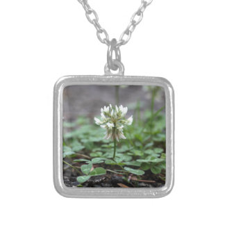 Clover on a tared road. square pendant necklace