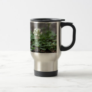 Clover on a tared road. stainless steel travel mug