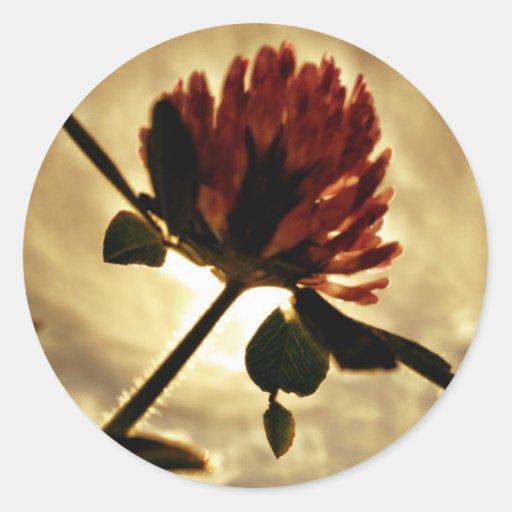 clover round stickers