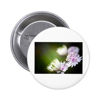 Clover vignette 6 cm round badge