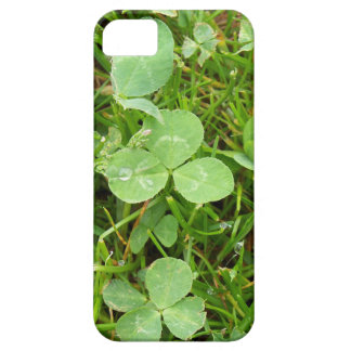 Clovers and Dew Drops iPhone 5 Covers