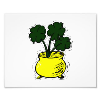 clovers growing in pot of gold image png photographic print