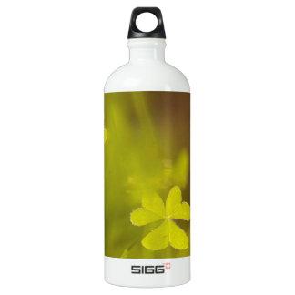 Clovers Water Bottle