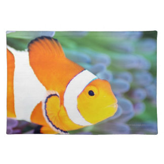 Clown anemonefish placemat