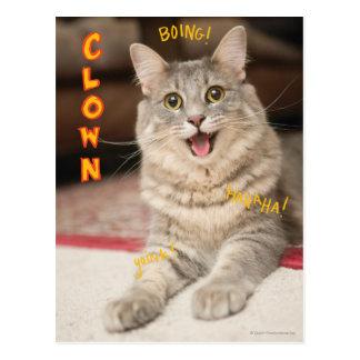Clown Cat Postcard