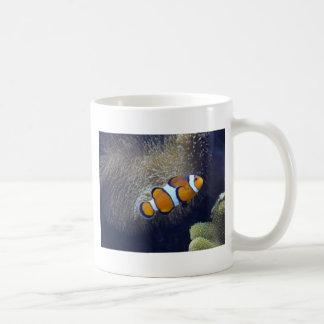 clown fish, 2 mugs