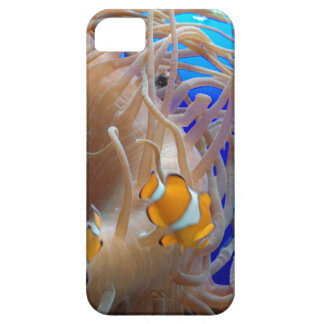 Clown Fish Darting Among The Stinging Tentacles Barely There iPhone 5 Case