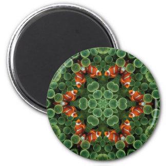 Clown Fish Green Pods Magnet