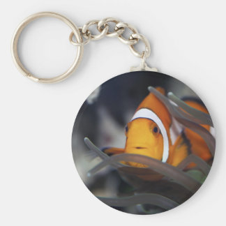 Clown-fish in anemone basic round button key ring