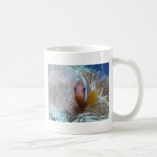 clown fish in anemone mugs