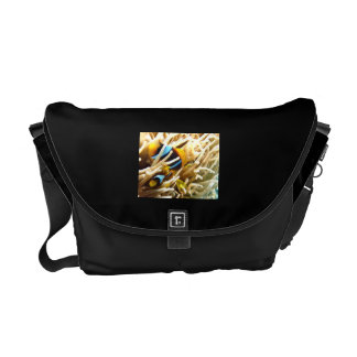 Clown Fish Messenger Bags