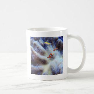 clown fish mugs