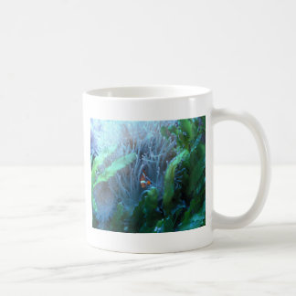 Clown Fish Coffee Mugs