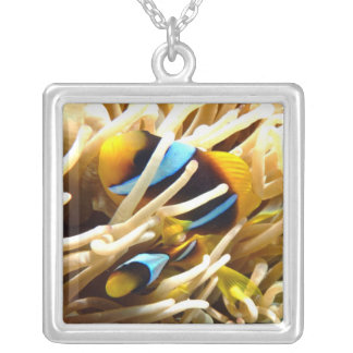 Clown Fish Silver Plated Necklace