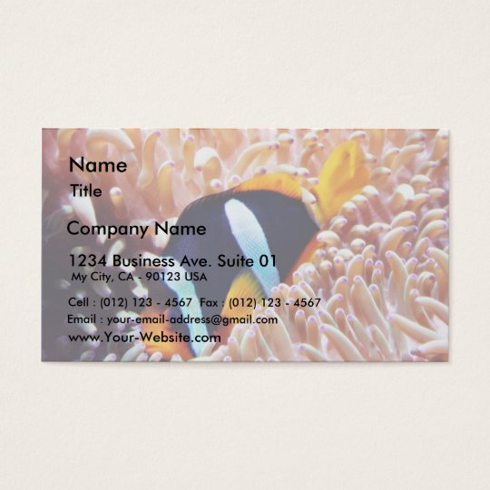 Clown Fish Tropical Fish Business Card
