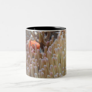 clown fish Two-Tone coffee mug