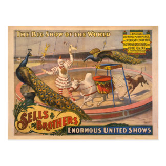 Clown, Zebu and Peacock Circus Poster Postcard