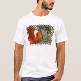 Clownfish 2 T-Shirt
