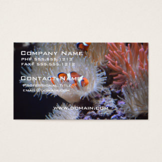 Clownfish Business Card