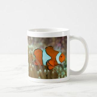Clownfish Great Barrier Reef Coral Sea Coffee Gift Basic White Mug