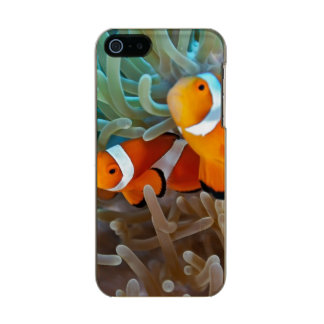 Clownfish Incipio Feather® Shine iPhone 5 Case
