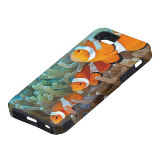Clownfish iPhone 5 Cases